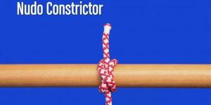 nudo constrictor
