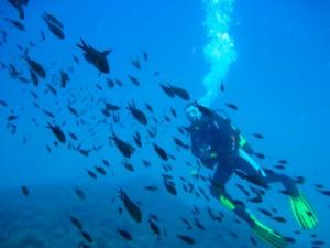 Submarinismo-en-tarifa