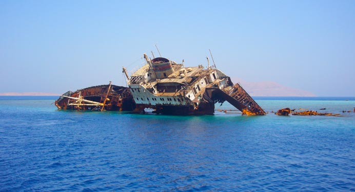 Estrecho de Titán Bucear con tiburones martillo