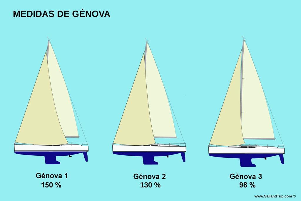 Medidas y tipos de génovas