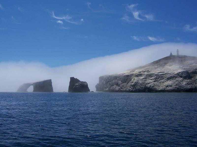 Niebla marina