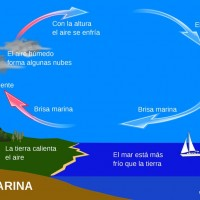 Brisa marina, el terral, qué es y có o se forma