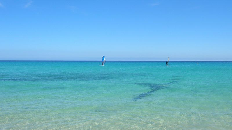 Fuerteventura, windsurfing