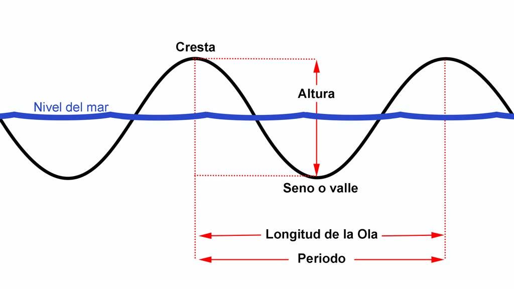 Altura y longitud de ola
