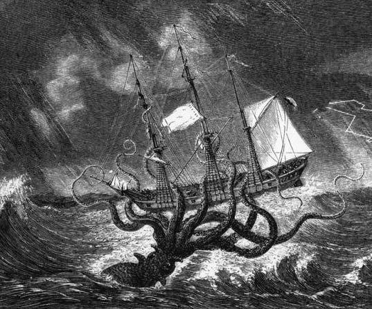 Calamar gigante o monstruo de las profundidades