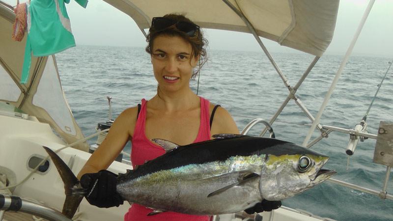 Pesca de atún en Panamá