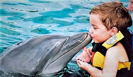 Niño con delfín